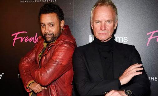 Вышел новый сингл англо-ямайского проекта Sting + Shaggy