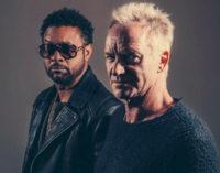 Состоялся релиз альбома Sting & Shaggy — 44/876