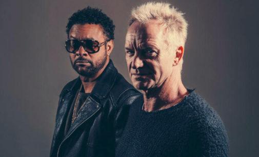 Состоялся релиз альбома Sting & Shaggy – 44/876