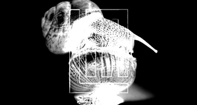 Тилль Линдеманн выпустил новый клип, снятый с помощью искусственного интеллекта