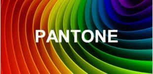 Институт Pantone назвал главный цвет 2020 года