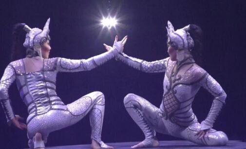 Мировое онлайн шоу. Cirque du Soleil покажет онлайн свое благотворительное шоу «One Night for One Drop»