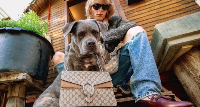 Мода и стиль. Gucci анонсировал новую карантинную коллекцию осень-зима 2020