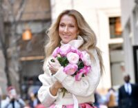 Новости кино и музыки. Celine Dion дебютирует в голливудском кино