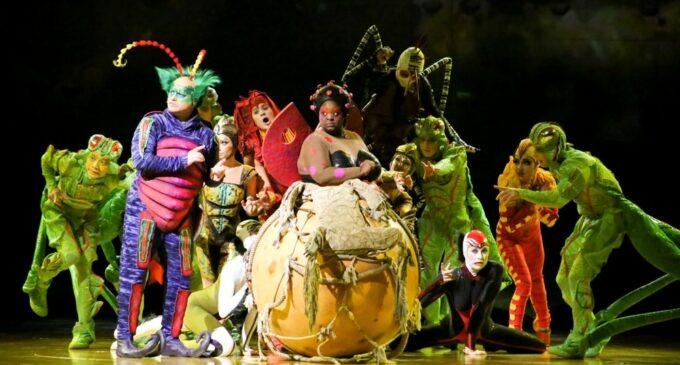 Культура и искусство. Cirque du Soleil возобновляет выступления