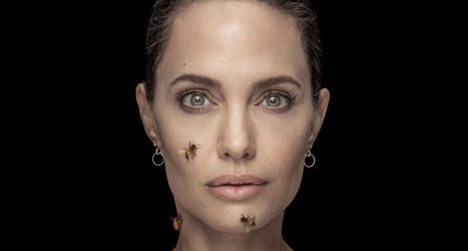 Про экологию. Анджелина Джоли снялась с роем пчел для специального материала National Geographic