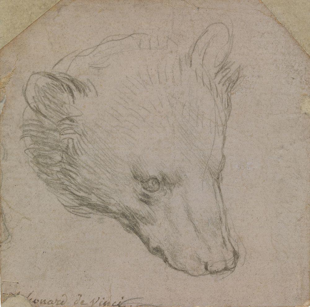 Рисунок Леонардо да Винчи выставили на аукционе за 12 миллионов фунтов стерлингов
